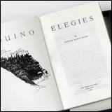 The Duino Elegies (1987)